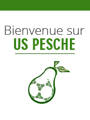 US PESCHE: Club de foot union sportive